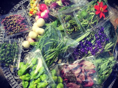 【期間限定】【神戸カフェスタイル】【プロ仕様】カラフルミニ野菜セットS【旬をお届け】