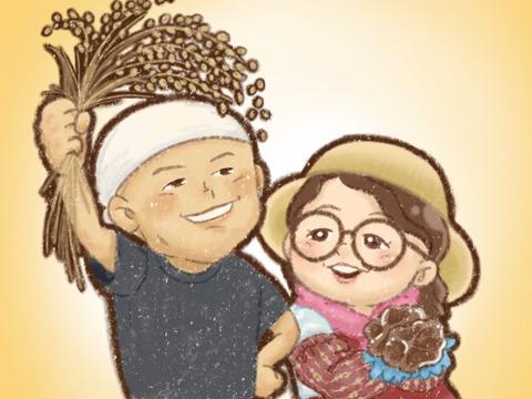 【おまけ付】令和3年 新潟県産コシヒカリ 反町の【発芽前玄米】はとても食べやすいですよ(1㎏)