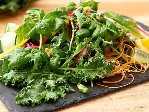 【熨斗付き】生でそのまま食べてほしいサラダケールなど、こだわりの野菜「きらきらベジ」5品目のお試しセットです。【5品目×各2パック】