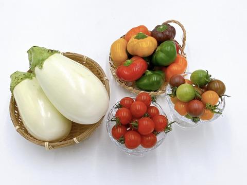 【お一人様用】カラフルミニ野菜とふわとろ白ナスの詰め合わせ
