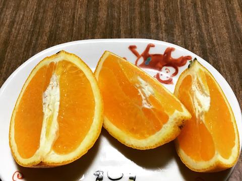 【農薬不使用】見た目はあまりよくないですが、国産バレンシアオレンジ2キロ