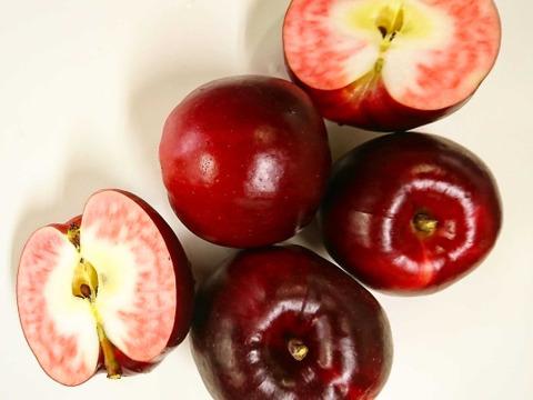 果肉の赤い加工用りんご🍎紅の夢🍎 9㎏