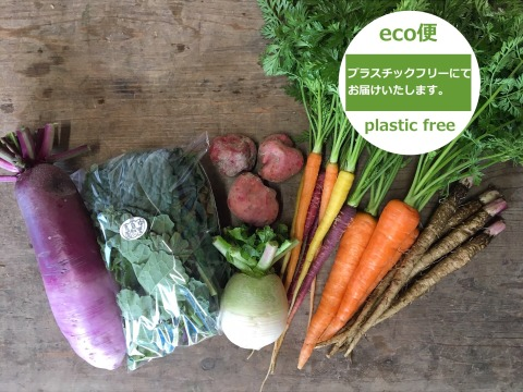 【高知県・中里自然農園】●eco便●お試しお野菜BOX(約6品目)/無農薬