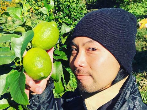 【熱海産♨農薬化学肥料不使用】「熱海レモン2020」A(Ace)チーム 約1kg