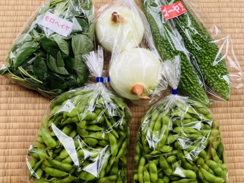 枝豆王国新潟から☆【1kg】まめ〜!枝豆!うんめよ(^^)と新鮮野菜3品♪
