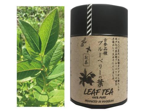 【抗酸化力は生ブルーベリーの40倍】古参品種ブルーベリーの葉のお茶(20g)(送料¥360)