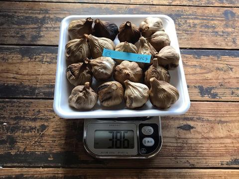 ⑬  自然栽培 黒にんにく 小粒で多め たっぷり18個 良い仕上がりです 人気の黒ニンニクです 食べやすくて美味しい
