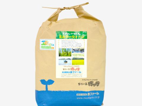 【低農薬米・白米5kg】清らかな地下水で育てたお米!もちもち食感!スプリングライス ミルキークイーン