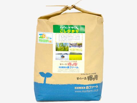 【低農薬米・無洗米5kg】清らかな地下水で育てたお米!スプリングライス こしひかり