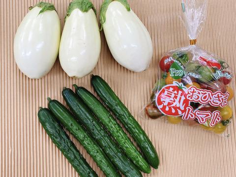 【お一人様用】ふわとろ白ナス(3本)とカラフルミニトマト(400g)ときゅうり(5本)のセット