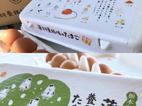 【食べ比べセット】枯草菌の赤たまご+酵母の平飼いのたまご