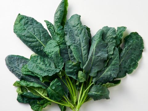 生でそのまま食べてほしいサラダケールなど、こだわりの野菜「きらきらベジ」5品目のお試しセットです。【5品目×各2パック】