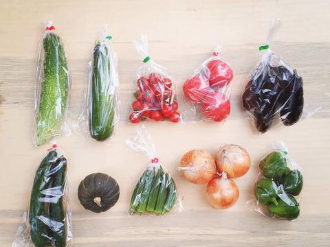 『子育て農家の野菜セット』 Mサイズ 10~11品目