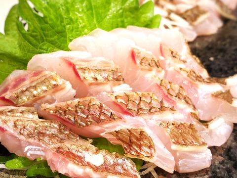 美味しい真鯛を食べ尽くそう!頭にアラがついてくる!3枚おろし皮あり【初回限定BOX】