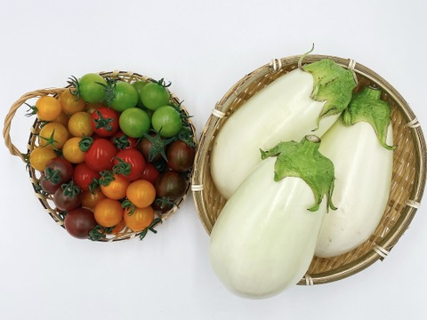 【季節限定】ふわとろ白ナス(10本)とカラフルミニトマト(詰め合わせ2kg)のセット