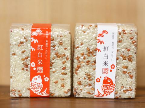 【のし対応可能】紅白祝い米(赤帯・白帯1つずつ)【安心・安全を贈り物に 無農薬・無肥料・天日干し】