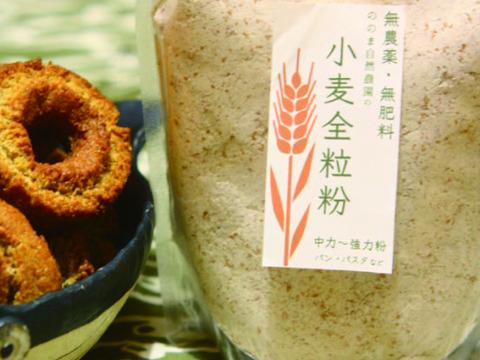 【無農薬・無肥料 自然栽培 天日干し】生命力溢れる 小麦全粒粉250g