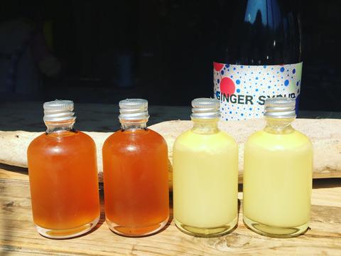 50ml 4本 濃厚Gunger Syrup2本 & 柚子果汁100%2本