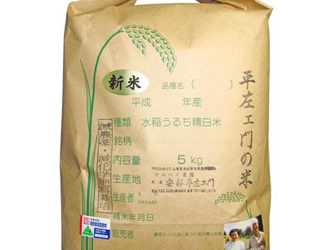 令和3年産 特別栽培米コシヒカリ 玄米5kg