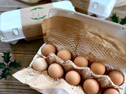 土佐ジローのおいしいたまご【30個】おさき農場直送