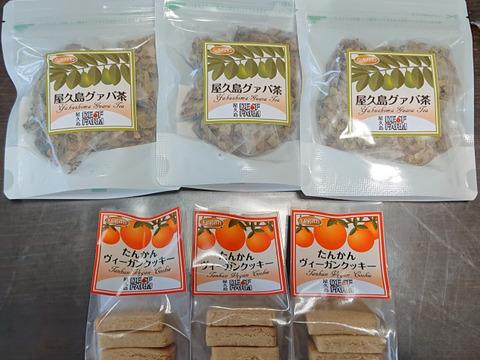 グルテンフリークッキー(たんかん)とグァバ茶セット【ヴィーガン】