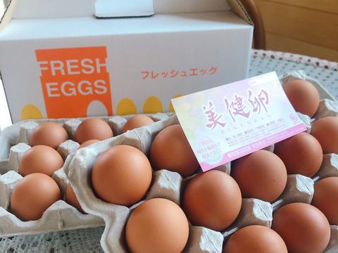 これぞ卵!鶏卵30個(化粧箱入)|定期便、ギフトにも