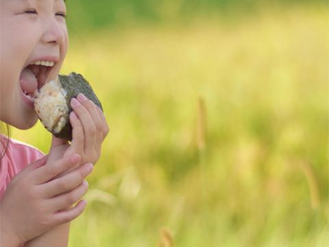 子供から大人、全ての生き物に安心を…自然栽培天日干しササニシキ【五分搗き5キロ】