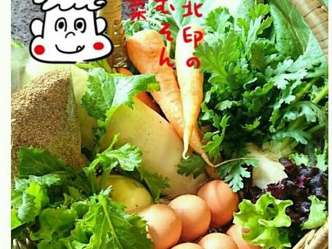 「有機JAS認証」旬の野菜セット S 5~8品