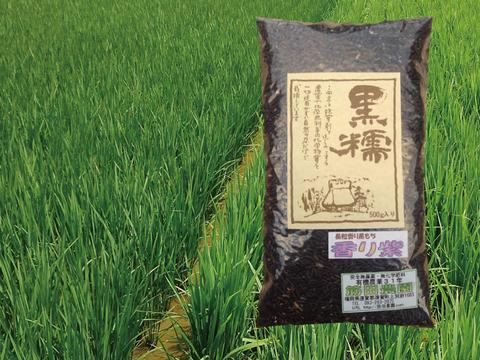 香り豊かな黒糯(くろもち)の稀少品種【500g】