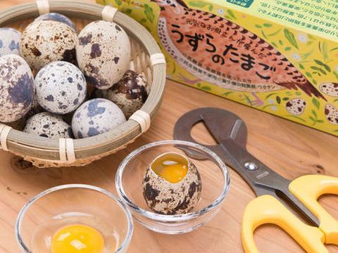 命のカプセル(うずらの生卵)卵40個(クール便配送)