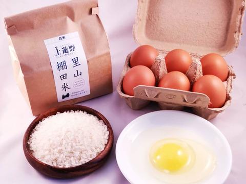 【詰合せ】有機棚田米コシヒカリ2kg+ミルキークイーン2kg+イセヒカリ2㎏ + 平飼い卵20個 【熨斗付き】