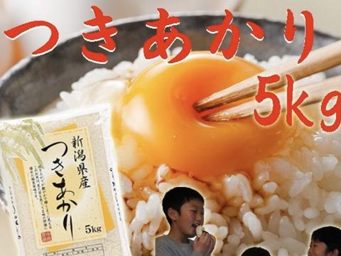 [新米]   つきあかり&こしいぶき食べ比べセット  10kg  白米  令和三年産