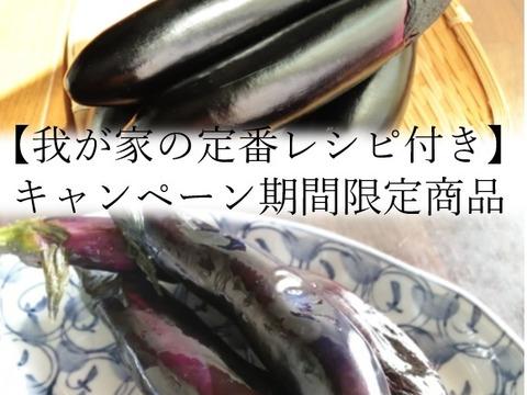 【おすすめの食べ方付き】トロ~リ長ナス 大盛りセット☆(約4kg)