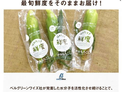『甘々娘(かんかんむすめ)』鮮度保持フィルムで全国発送でも採りたてのトウモロコシを!