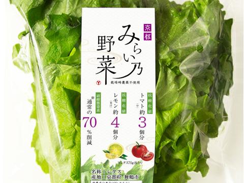 体に嬉しい!みらい乃野菜 高抗酸化値レタス【1株80~100g×8株 】水耕栽培