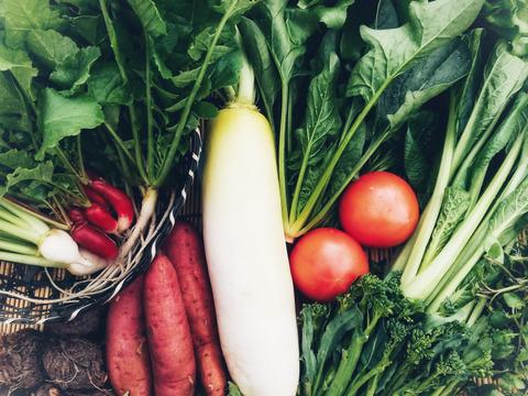 【二十四節気の野菜7~9品目】魚のまち農家の野菜セット