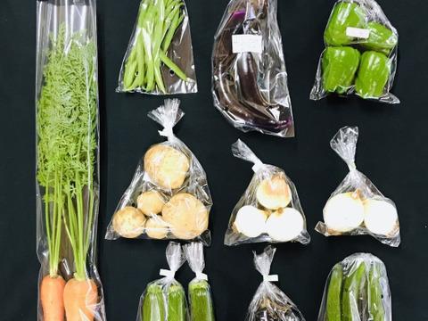 【抗酸化力に注目】オーガニック・しあわせ野菜セット(Mサイズ)
