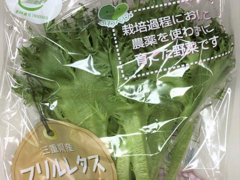 【農薬:栽培期間中不使用】ふわべじ フリルレタス(10袋入り1袋60g以上)個別包装で衛生的   土や虫がつかないクリーンな環境【GAP認証野菜】