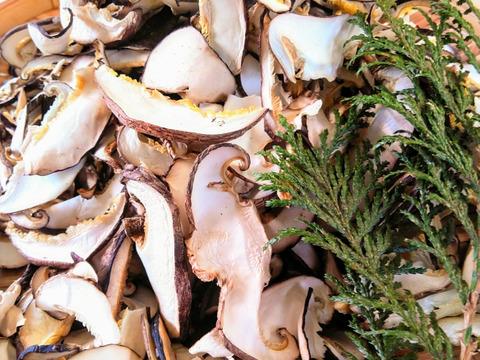 毎日の菌活に!原木育ちのスライスしいたけ まとめてお得(60g4袋)