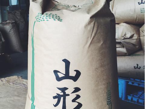 【H30収穫】【玄米】つや姫 10kg 山形県飯豊町産 特別栽培米