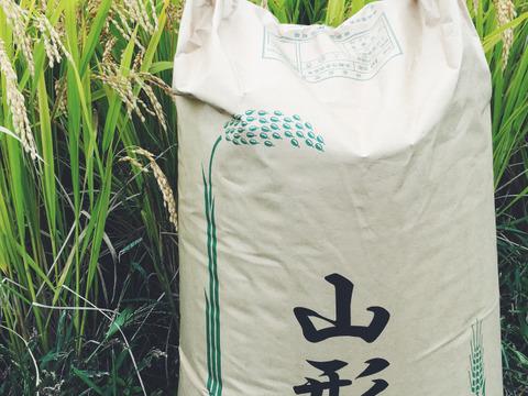 【H30収穫】【白米】つや姫 10kg 山形県飯豊町産 特別栽培米
