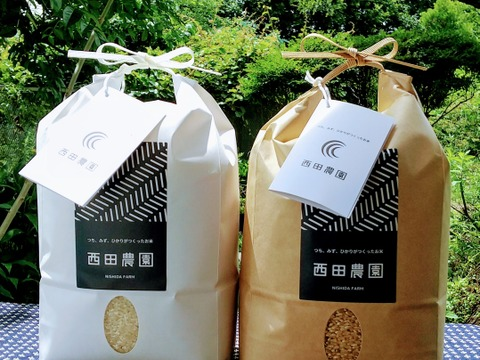 味比べ 特別栽培米コシヒカリ 玄米2kg&精米2㎏  低農薬(80%以上削減)
