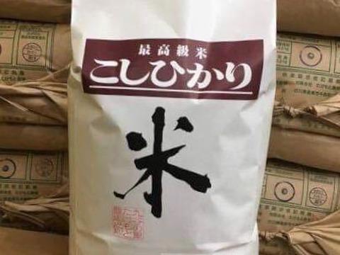 (玄米20kg)農薬をつかわないコシヒカリ(石川県産)20kg【令和元年産】