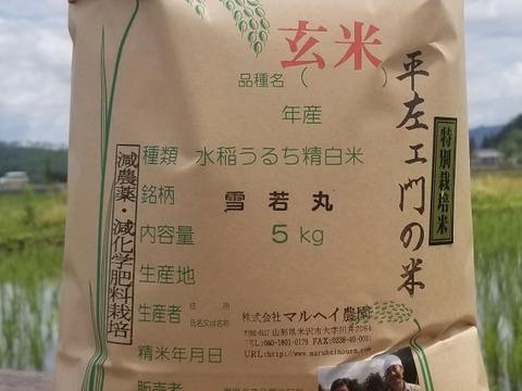 令和2年産 特別栽培米雪若丸玄米5kg