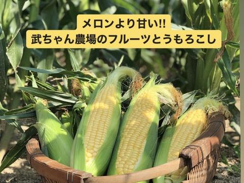 【たっぷり】メロンより甘い‼︎武ちゃん農場の朝採りとうもろこし(330g程度が24本)