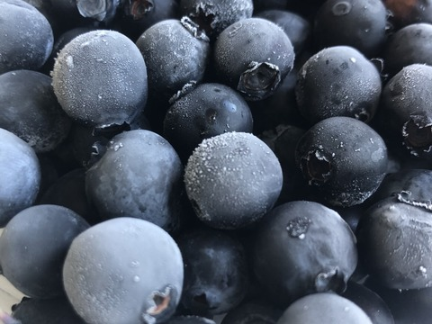 冷凍ブルーベリー (超大粒 Lサイズ Φ23㎝〜) 500g *真空パック