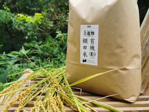 【新米】硬質米・珍品種!有機棚田米イセヒカリ3kg