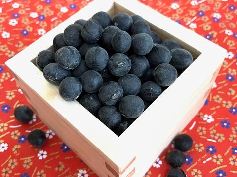 京都丹波黒大豆 250グラム✖2 袋