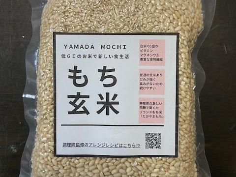 【ダイエッターに大人気】令和2年産餅米 もち玄米お試しパック3合分