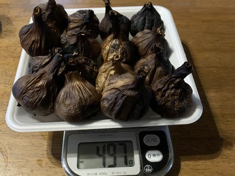 自然栽培 黒にんにく 粒揃いたっぷり16個 良い仕上がりです 人気の黒ニンニクです 食べやすくて美味しい